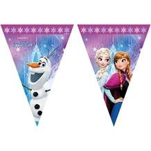 Frozen Northern Lights Flag Banner | Bunting