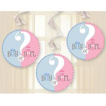 Gender Reveal Baby Shower Party Hanging Swirl Decorations