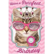 Cat Kitten 'Have a Purrfect Birthday' Greeting Card