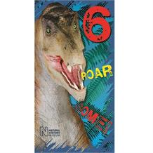 Dinosaur | Natural History Museum 6th Birthday Greeting Card