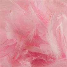 Baby Pink Eleganza Decorative Craft Feathers 50g