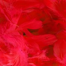 Red Eleganza Decorative Craft Feathers 50g