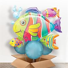 Tropical Fish Giant Shaped Balloon in a Box Gift