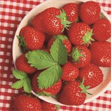 Strawberry Picnic Party Napkins | Serviettes
