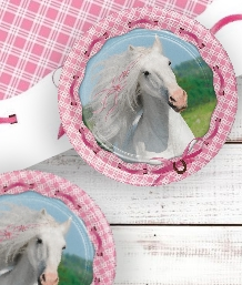 Heart Horse Party Supplies | Decorations | Balloons | Packs