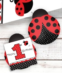 Ladybird 1st Birthday Party Supplies | Balloons | Decorations | Packs
