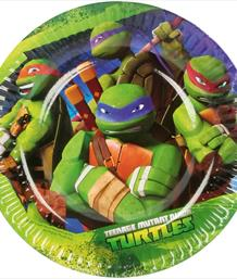 TMN Turtles Party Supplies | Balloons | Decorations | Packs
