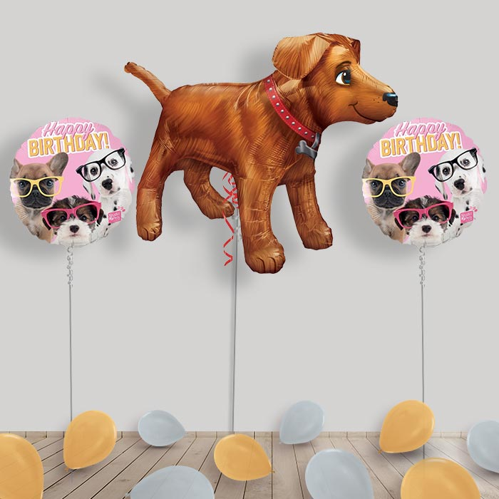 Inflated Dog | Puppy Helium Balloon Package in a Box