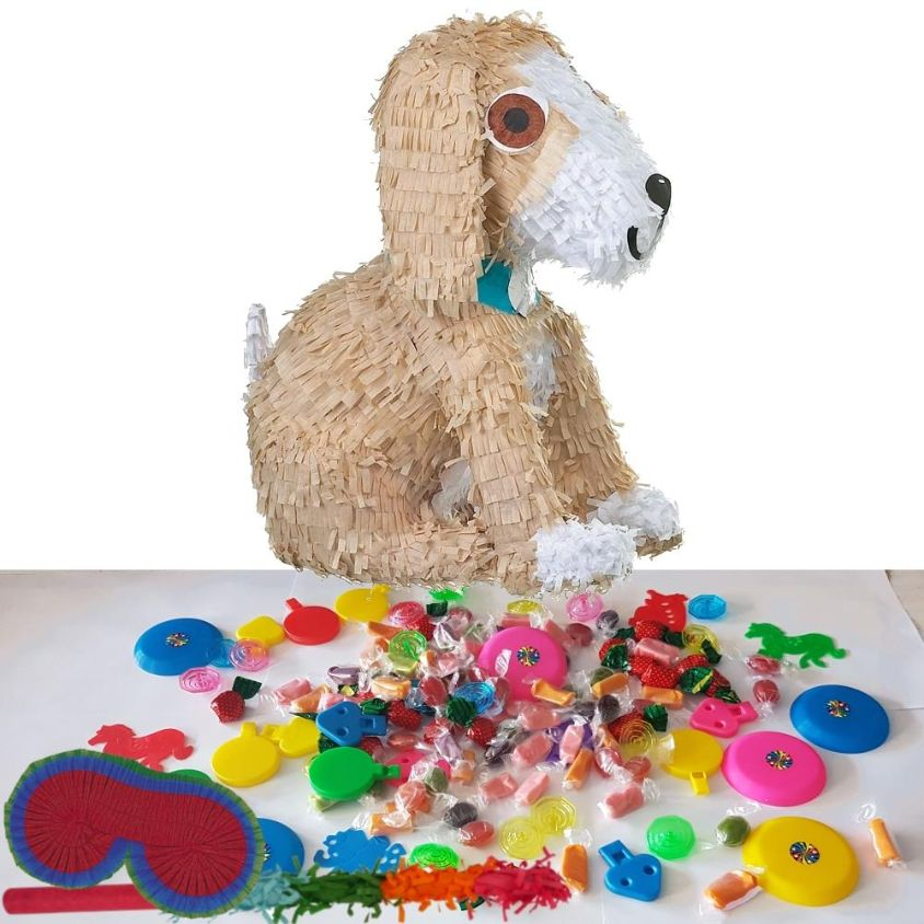 Puppy Pinata Party Kit with Favours and Confetti