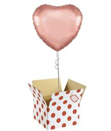 Plain Coloured Balloon in a Box | Party Save Smile
